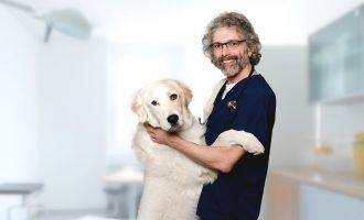 Dr Marco Margiocco Bio Header